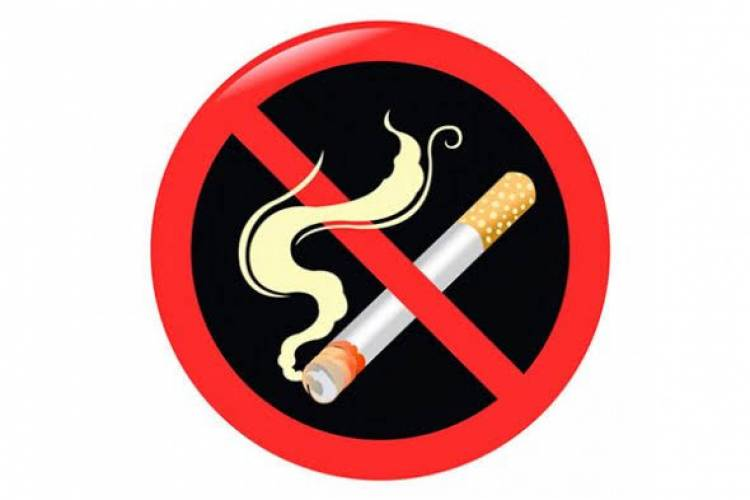 (LITERASI X, XI, XII ) Mengulik Lebih Dalam Soal Bahaya Merokok Pada Daya Tahan Tubuh Manusia